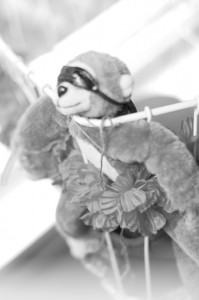Overexposed flying monkey in a basket with flowers