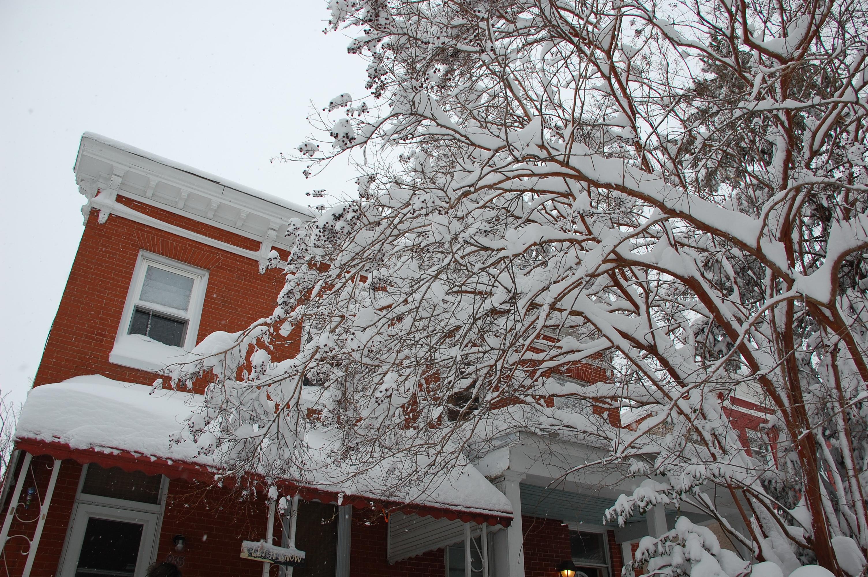 Snowpocalypse2010Part2_1