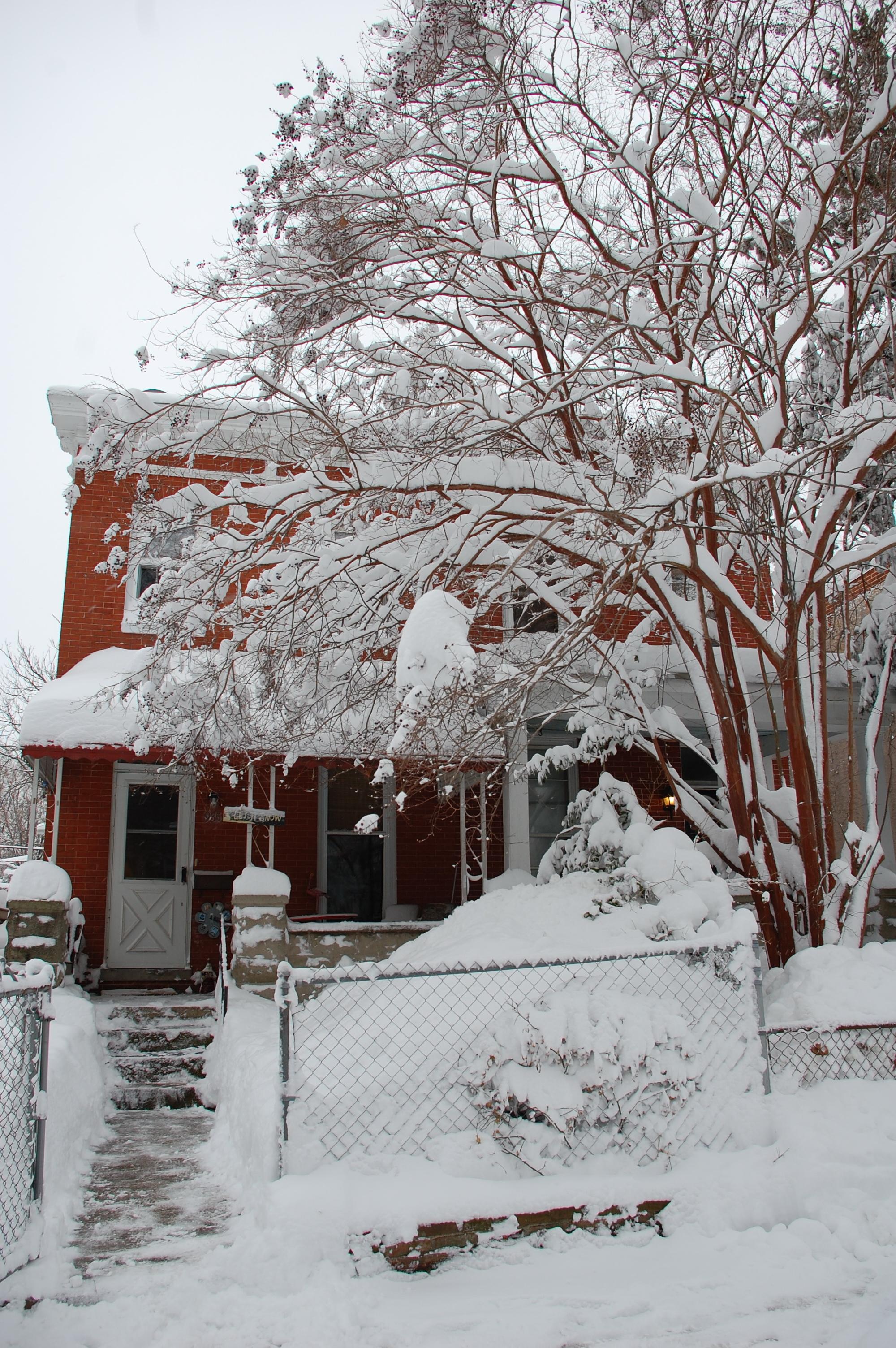 Snowpocalypse2010Part2_11