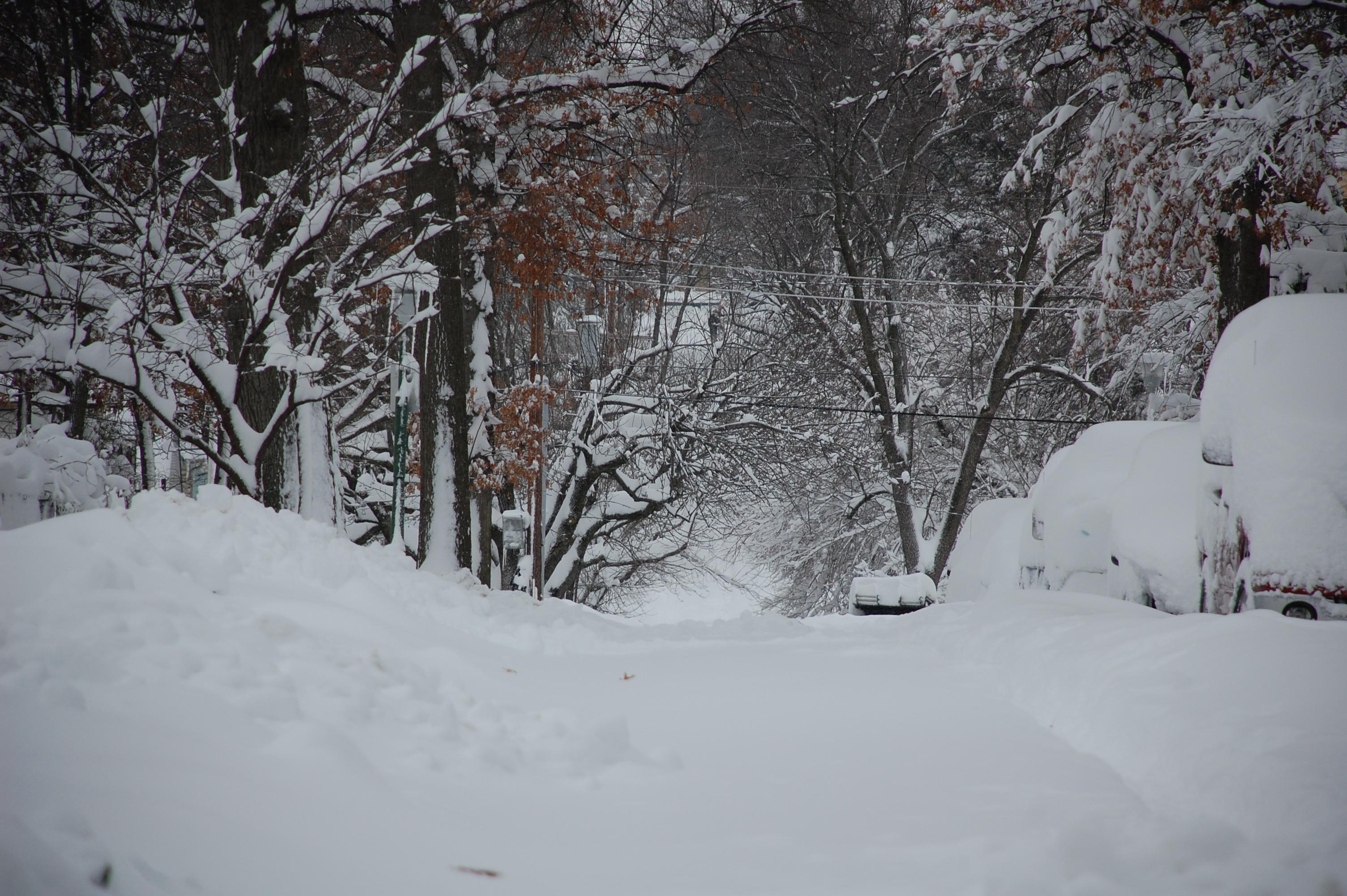 Snowpocalypse2010Part2_2