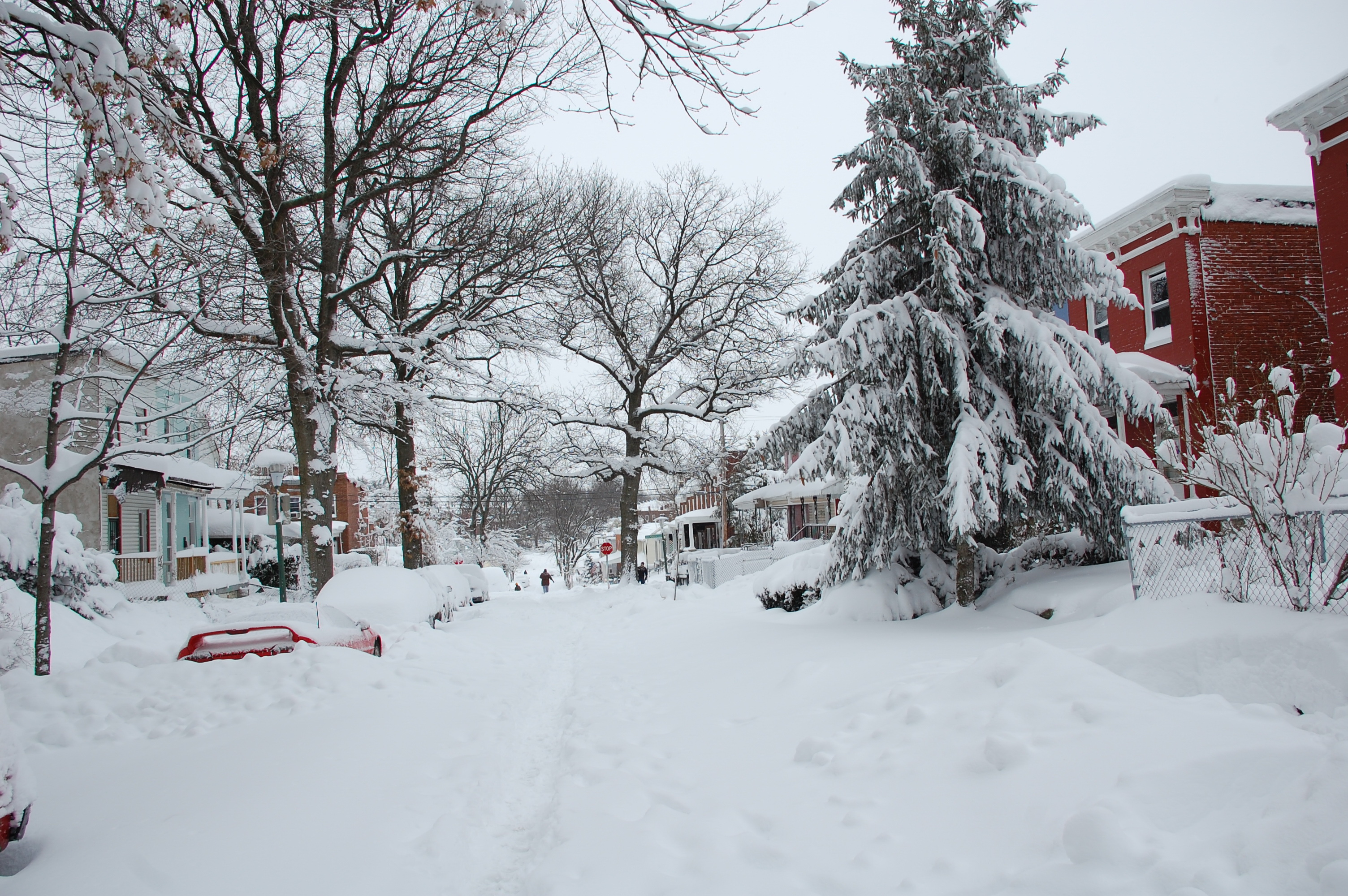 Snowpocalypse2010Part2_5