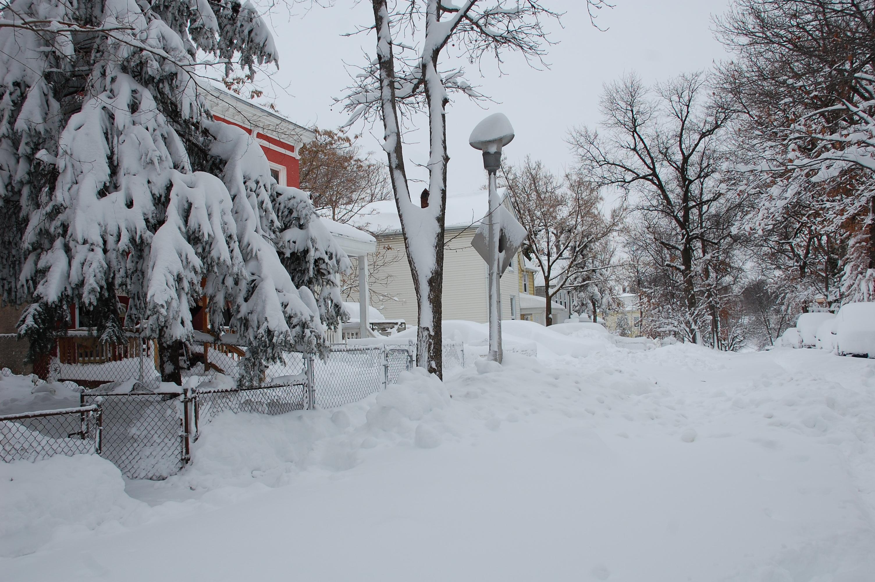 Snowpocalypse2010Part2_6