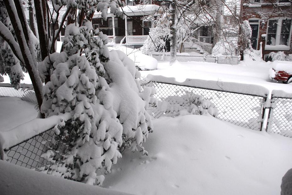 Snowpocalypse2010_4