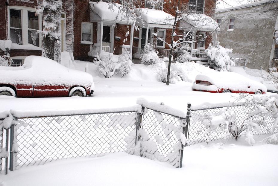 Snowpocalypse2010_5