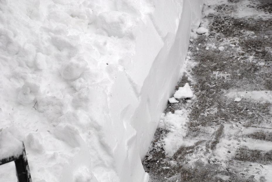 Snowpocalypse2010_6