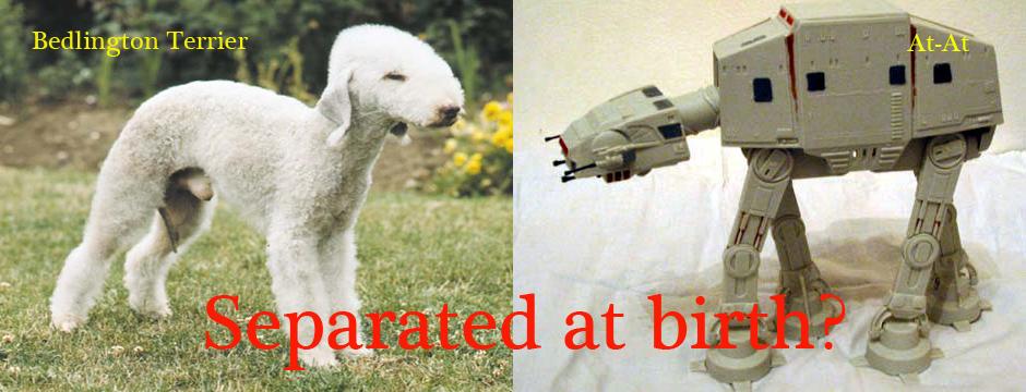 BedlingtonTerrier and an At-At Separated at Birth