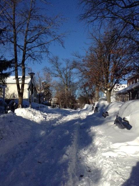 Historic Baltimore Blizzards: Jan. 2016: Snowy Homestead St. Baltimore, MD