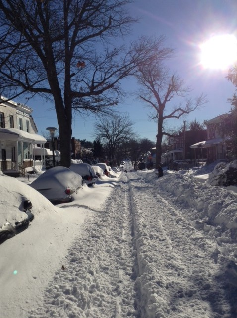 Blizzards: Jan. 2016: Snowy Homestead St. looking East: Baltimore, MD